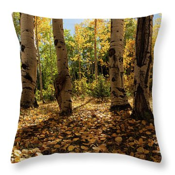 Throw Pillow featuring the photograph Crested Butte Colorado Fall Colors Panorama - 3 by OLena Art Brand