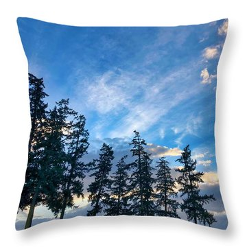 Throw Pillow featuring the photograph Crisp Skies by Brian Eberly