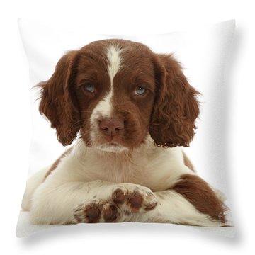 Cross Paws Throw Pillow