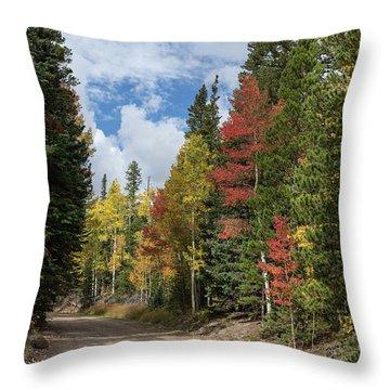 Throw Pillow featuring the photograph Cruising Colorado by James BO Insogna