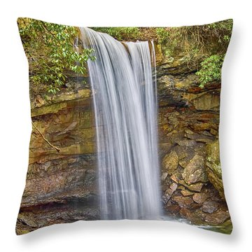 Cucumber Falls Throw Pillow