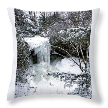 Cucumber In Winter Throw Pillow