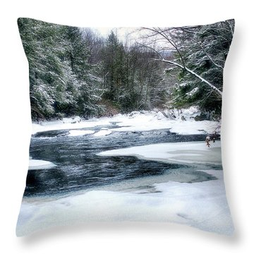 Cucumber Run In Winter Throw Pillow