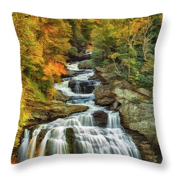 Cullasaja Falls Throw Pillow