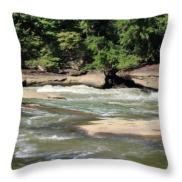 Throw Pillow featuring the photograph Cumberland River by Angela Murdock