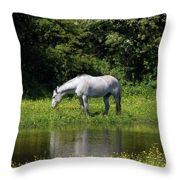 Cumbria. Ulverston. Horse By The Canal Throw Pillow