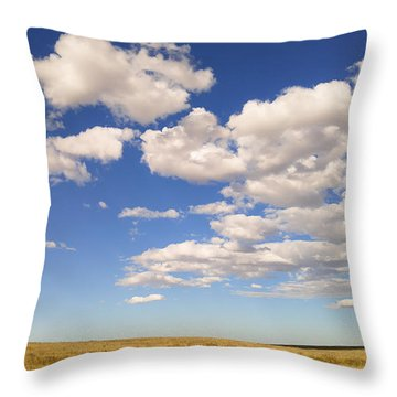Throw Pillow featuring the photograph Cumulus by Carl Young