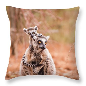 Throw Pillow featuring the photograph Curiosity by Alex Lapidus