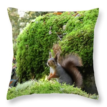 Curious Squirrel Throw Pillow