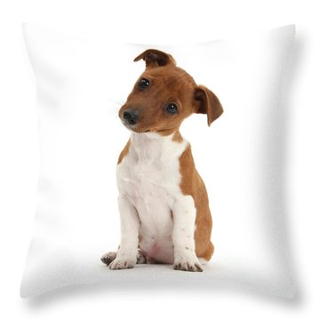 Throw Pillow featuring the photograph Curious by Warren Photographic