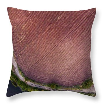 Curved Pathway Throw Pillow