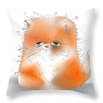 Fuzzy Throw Pillows