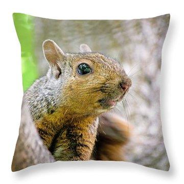 Cute Funny Head Squirrel Throw Pillow