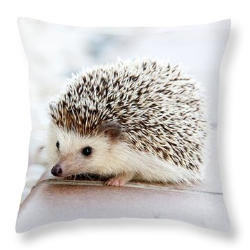 Cute Hedgeog Throw Pillow