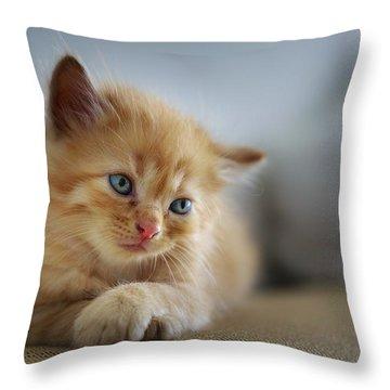 Cute Orange Kitty Throw Pillow