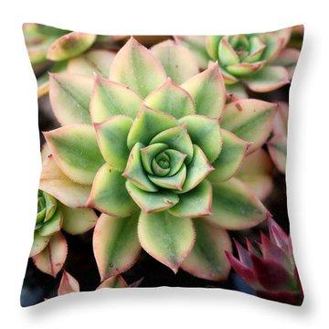 Cute Succulent Throw Pillow