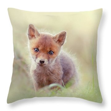 Cuteness Overload Series - Per-animal-ification Of Cuteness Throw Pillow