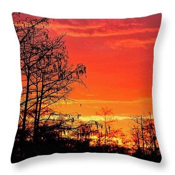 Cypress Swamp Sunset 2 Throw Pillow