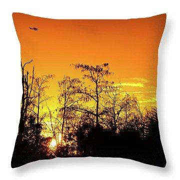 Cypress Swamp Sunset 3 Throw Pillow