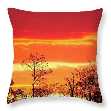 Cypress Swamp Sunset 5 Throw Pillow