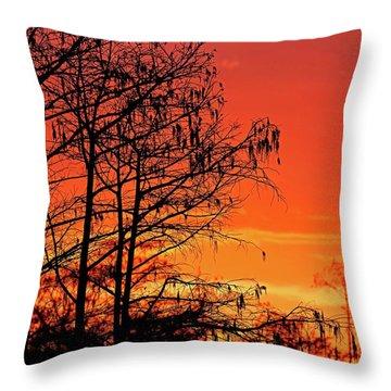 Cypress Swamp Sunset Throw Pillow