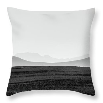 D1148p Throw Pillow