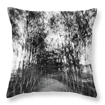 D1797p Throw Pillow