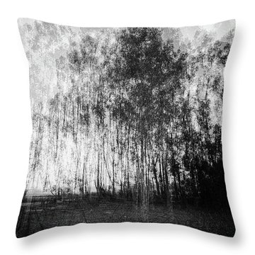 D1984p Throw Pillow