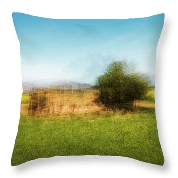 D1992p Throw Pillow