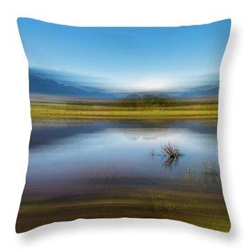 D2056p Throw Pillow