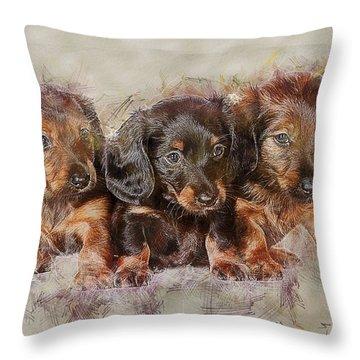 Dachshund Three Puppies Throw Pillow