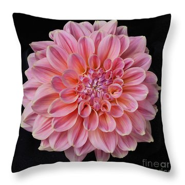 Throw Pillow featuring the photograph Dahlia  by Ann Jacobson