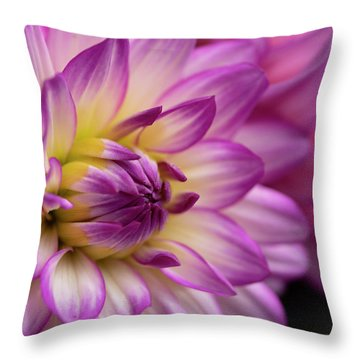 Dahlia II Throw Pillow