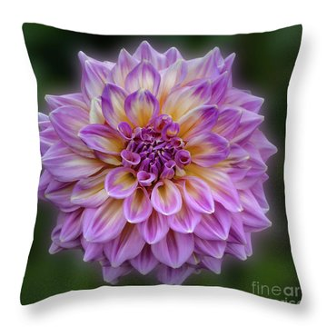Throw Pillow featuring the photograph Dahlia 'kidd's Climax' by Ann Jacobson