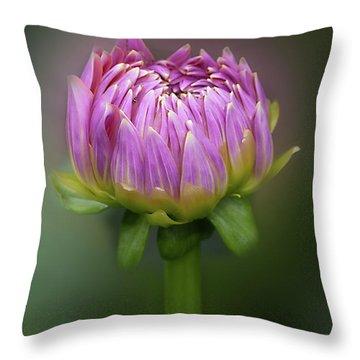 Dahlia 'mingus Phillip Sr' Throw Pillow