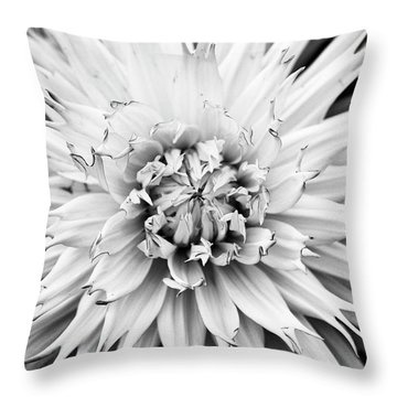 Throw Pillow featuring the photograph Dahlia Normandie Frills Monochrome by Tim Gainey
