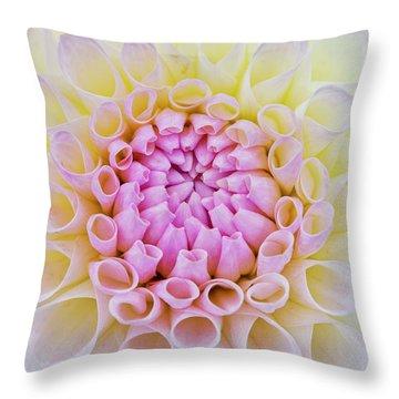 Throw Pillow featuring the photograph Dahlia Ryecroft Brenda T Flower by Tim Gainey