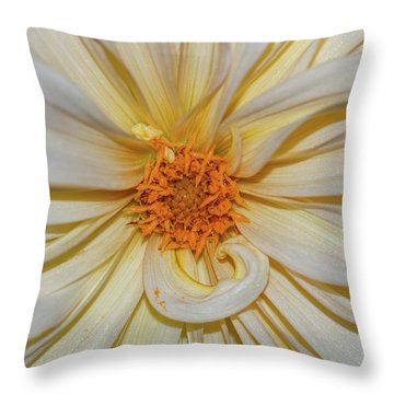 Dahlia Summertime Beauty Throw Pillow