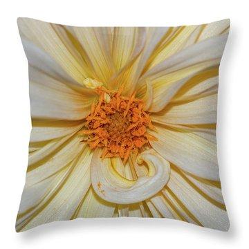 Dahlia Summertime Beauty Throw Pillow