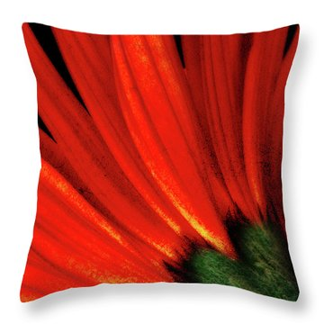 Daisy Aflame Throw Pillow