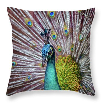 Throw Pillow featuring the photograph Dancing Indian Peacock  by Awais Yaqub