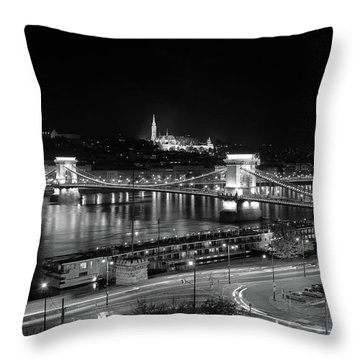 Throw Pillow featuring the photograph Danube River At Night by Mark Duehmig
