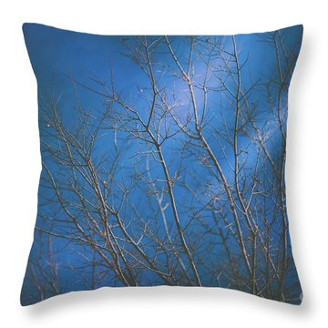 Throw Pillow featuring the photograph Dark Winter by Dheeraj Mutha