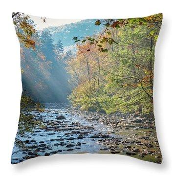 Dawn At Metcalf Bottoms Throw Pillow