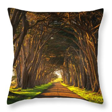 Dawn At The Cypress Tree Tunnel Throw Pillow