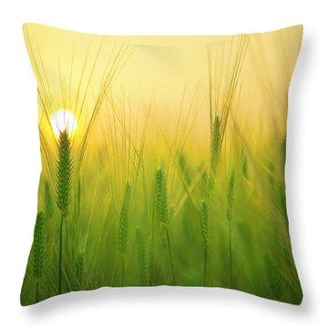 Dawn At The Wheat Field Throw Pillow