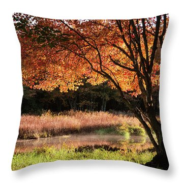 Throw Pillow featuring the photograph Dawn Lighting Rhode Island Fall Colors by Jeff Folger