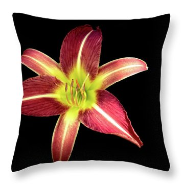 Daylily On Black Throw Pillow
