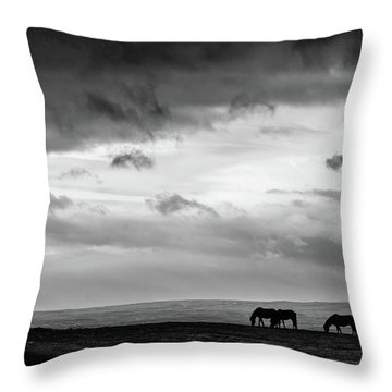 Days End At Hvammstangi Throw Pillow