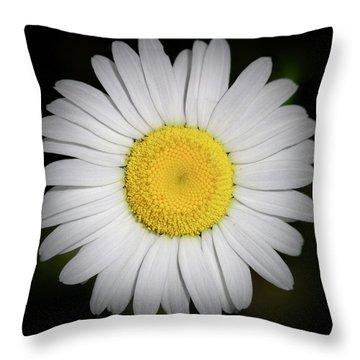 Day's Eye Daisy Throw Pillow